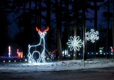 Reindeer in the Snow at Santa Claus Land of Lights